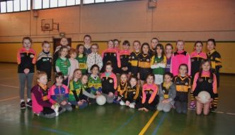 Ladies Club Notes 7th February, 2017
